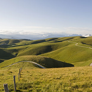 Hügeln von Soave